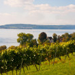 Lake Constance, Germany - Stock Photo