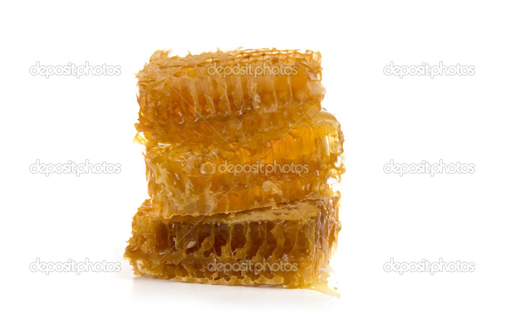 Honeycomb isolated on a white background  Stock Photo #3936138