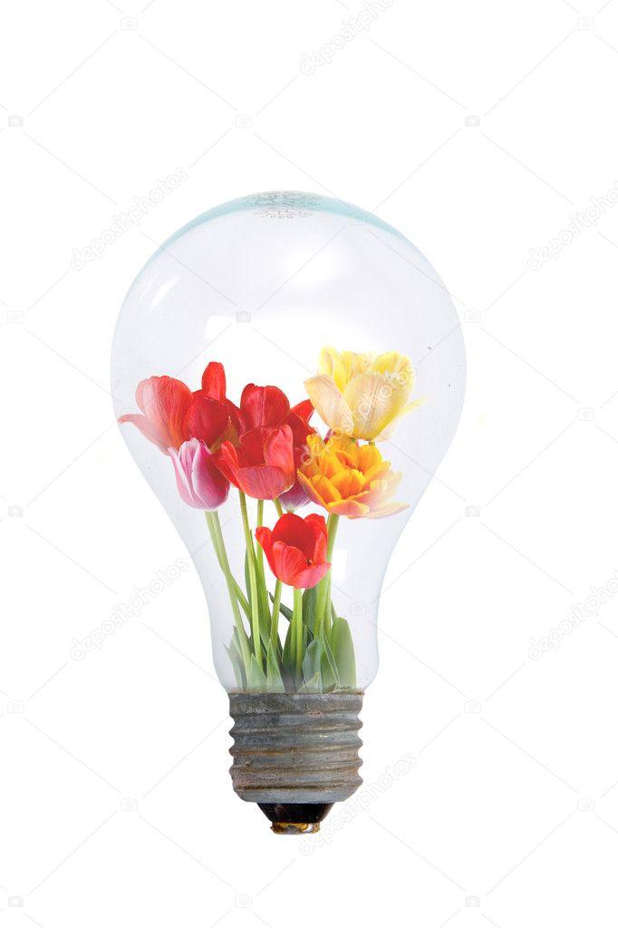 Настольный лампы в Зее Сравнить цены, купить