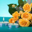 Beautiful yellow roses — Stock Photo