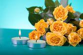 Krásné žluté růže — Stock fotografie