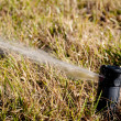 Lawn Sprinkler — Stock Photo #3948583