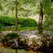 Stock Photo: Wooded Amphitheater