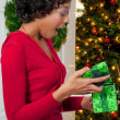 Black Woman Holding a Christmas Ornament — Stock Photo #4309159