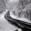 Snow storm on a rural highway — Stock Photo #4568758
