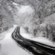 Stock Photo: Snow storm on rural highway