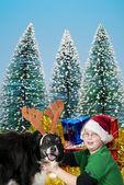 A Christmas boy and his reindeer dog — Stock Photo