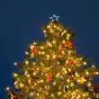 Christmas tree night — Stock Photo