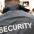 Security man — Stock Photo