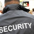 Security man - Stock Photo