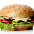 A fresh hamburger with salad and onion - Stock Photo