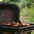 Stock Photo: Chicken legs on the grill