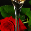 Two glasses of champagne and rose — Stock Photo