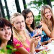Group of beautiful girls drinking wine — Stock Photo #4300820