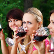 Group of beautiful girls drinking wine — Stok Fotoğraf #4300828