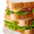 Stock Photo: Fresh sandwich with vegetables and tomatoes