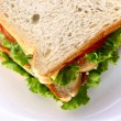 Fresh sandwich on th table — Stock Photo