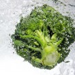 Stock Photo: Green broccoli dropped into water