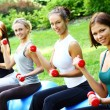 young and attractive womans doing fitness exercises — Stock Photo #4717584