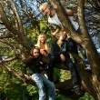 Happy family have fun in park on a tree — Stock Photo #5019033