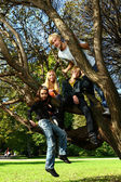 Happy family have fun in park on a tree — Stock Photo