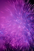 A beautiful fireworks — Stock Photo
