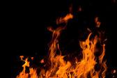 Płomienie. — Zdjęcie stockowe