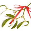 Mistletoe — Stock Photo #4305538