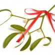 Royalty-Free Stock Photo: Mistletoe