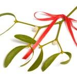 Mistletoe — Stock Photo #4305538