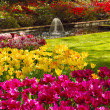 Fountain in the Keukenhof park — Stock Photo