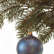 Stock Photo: Fir branch with christmas ball