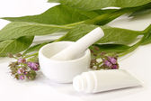 Comfrey Ointment — Stock Photo