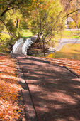Autumn landscape with stairs, bridge and pond — Stock Photo