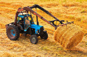 Tractor carrying hay at field — Stock Photo