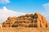 Big haystack at field — Stock Photo