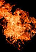 Plameny požáru zvyšování vysoké — Stock fotografie