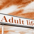 Adult life road sign — Stock Photo #5115249