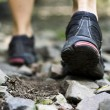 Stock Photo: Trail walking in forest, sport shoes