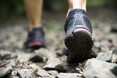 Trilha caminhando nas montanhas — Foto Stock