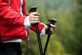 Nordic Walking hands, exercise outdoors — Stock Photo