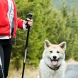 Royalty-Free Stock Photo: Nordic Walking with dog