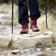Nordic Walking and hiking boots - Stock fotografie