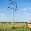 Power lines on green summer fields — Stock Photo