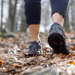Womwalking in autumn forest — Stock Photo #5177123