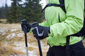 Nordic walking in mountains — Foto Stock