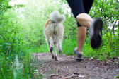 Woman running cross country with dog — Stock Photo