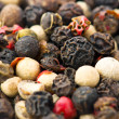 Macro spices: mix of different peppers balls — Stock Photo