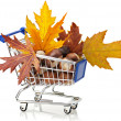 Royalty-Free Stock Photo: Autumn Shopping