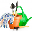 Garden tools — Stock Photo #4906120